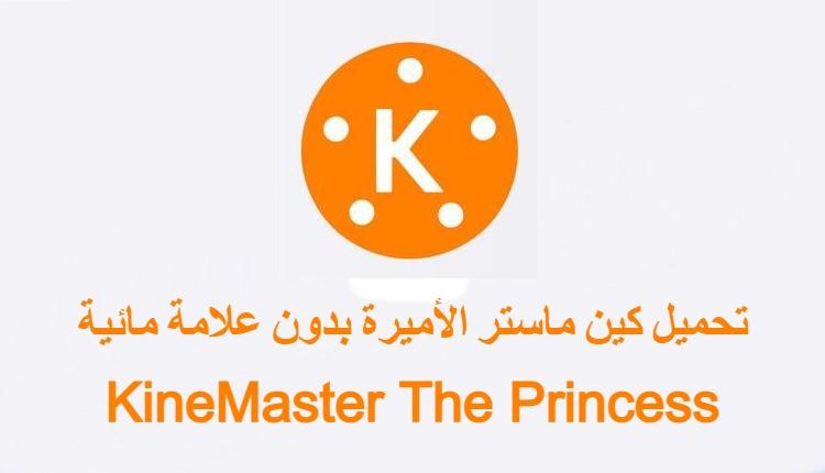 كين ماستر الأميرة